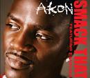 Smack That (Intl MaxiEnhanced) (feat. Eminem)/Akon