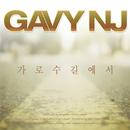 カロスキルで(feat.ARA)/Gavy Nj