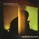 No Time Like The Future/Incognito