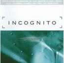 Future Remixed/Incognito