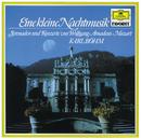 モ-ツァルト クラリネット協奏曲 ホルン協奏曲第1番/Charles Neidich, David Jolley, Orpheus Chamber Orchestra