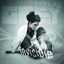 Invisible/Skylar Grey