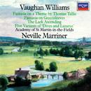 ヴォーン=ウィリアムズ:グリーン・スリーヴズの幻想曲、他/Academy of St. Martin in the Fields, Sir Neville Marriner