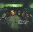 In The Mode/Roni Size, Reprazent