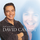 Then And Now/David Cassidy