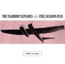 Peel Sessions Plus/The Teardrop Explodes