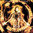 Aye/Angelique Kidjo