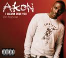 I Wanna Love You (Intl MaxiEnhanced) (feat. Snoop Dogg)/Akon
