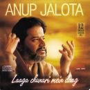 Laaga Chunari Mein Daag/Anup Jalota