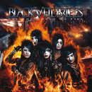 Set The World On Fire/Black Veil Brides