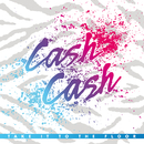 Take It To The Floor/Cash Cash
