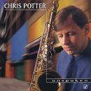 Unspoken/Chris Potter