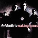 Waking Hours/Del Amitri