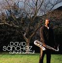 Cultural Survival/David Sanchez