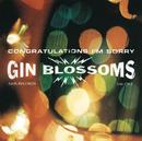 Congratulations I'm Sorry/Gin Blossoms