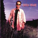 Perfectly Good Guitar/John Hiatt