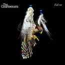 Falcon/The Courteeners