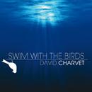 Swim With The Birds/David Charvet