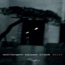 Melos/Vassilis Tsabropoulos, Anja Lechner, U.T. Gandhi