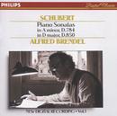 Schubert: Piano Sonatas in A minor, D.784 & D, D.850/Alfred Brendel
