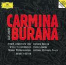 Orff: Carmina Burana/Barbara Bonney, Frank Lopardo, Anthony Michaels-Moore, Wiener Philharmoniker, André Previn, Arnold Schoenberg Chor, Wiener Sängerknaben