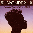 Wonder (feat. Emeli Sandé)/Naughty Boy
