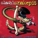 It's Five O'Clock Somewhere/Slash's Snakepit