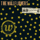 Bringing Down The Horse/The Wallflowers