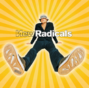 Maybe You've Been Brainwashed Too/New Radicals