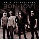 ホワット・ドゥ・ユー・ガット?/Jon Bon Jovi