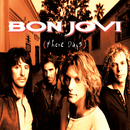 These Days/Jon Bon Jovi