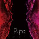 12012 BEST ALBUM 「PUPA」 2007~2010/12012