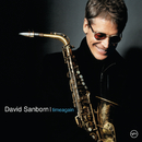 Time Again/David Sanborn