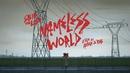 Nameless World/Skip The Use