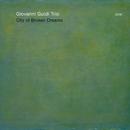 City Of Broken Dreams/Giovanni Guidi Trio