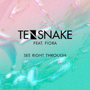 See Right Through (feat. Fiora)/Tensnake