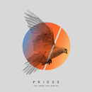 The Seeds You Sow EP/Prides