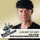 Livin' It Up/Peter Brandenberger