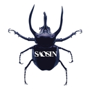 Voices (Acoustic)/Saosin