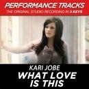 What Love Is This (Performance Tracks) - EP/Kari Jobe