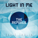 Light In Me (The Remixes) (feat. Nicole Croteau)/David Thulin