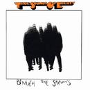Beneath The Shadows/T.S.O.L.