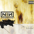 The Downward Spiral/Nine Inch Nails