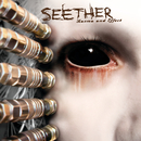 Karma and Effect/Seether