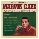 How Sweet It Is To Be Loved By You/Marvin Gaye
