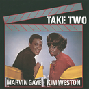 Take Two/Marvin Gaye