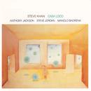 Casa Loco (feat. Anthony Jackson, Steve Jordan, Manolo Badrena)/Steve Khan