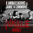 Jungle (Remixes)/X Ambassadors, Jamie N Commons