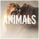 Animals/Maroon 5