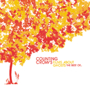 Films About Ghosts: The Best Of.../Counting Crows